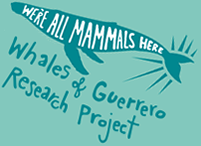 Whales of Guerrero Project